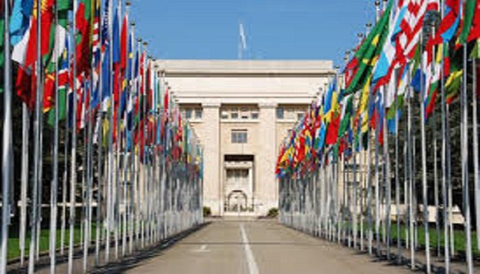 Experto de la ONU