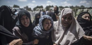 Estados Unidos - Palestinos
