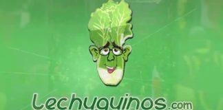 Videos Lechuguinos