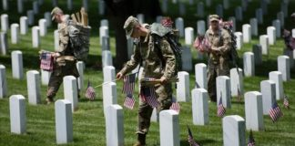 Veteranos - Estados Unidos
