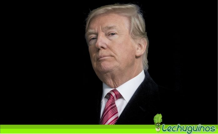 Donald Trump Cargos