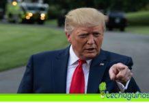 Trump abuso