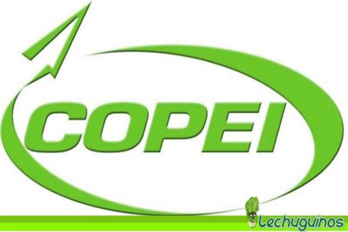 Copei: A pesar de derrota en comicios del 6D trabajaremos con diputados Chavistas