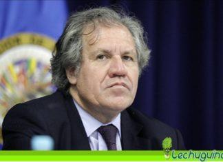 """Almagro pidió $ 13 millones por """"administrar"""" recursos que roban a Venezuela"""