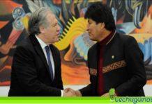 OEA almagro bolivia