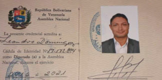 Leandro Domínguez