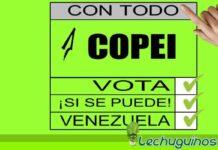 """Copei impulsa campaña """"La pelea es votando"""" de cara al 6D"""