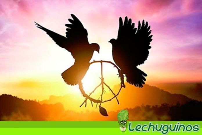 Venezuela es un Estado garante de la paz y de la progresividad de DDHH
