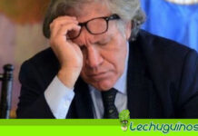 Parlasur investigará a Luis Almagro por promover el Golpe de Estado de Bolivia en 2019
