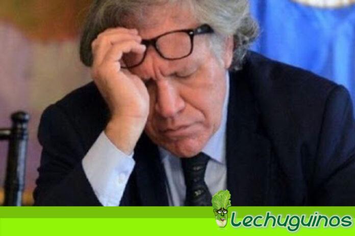 Argentina: Almagro es un inmoral absoluto por el Golpe contra Morales