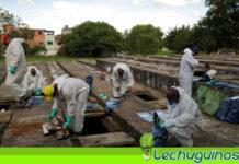 Exhuman tumbas antiguas en Brasil para hacerles espacio a los muertos por covid-19
