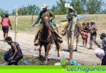 Expertos de ONU repudian expulsión de migrantes haitianos de EEUU